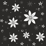 Абстрактные белые цветки на черной предпосылке Стоковое фото RF