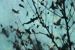 Абстрактные ветви. Стоковое фото RF