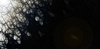 Абстрактные волнистые темные кривые бесплатная иллюстрация