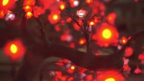 Абстрактные двигая света от искусственного дерева Сакуры с азиатскими украшениями стиля акции видеоматериалы