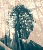 Абстрактные женщина и лес чернил Стоковое Изображение RF