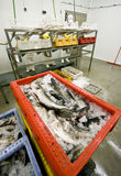 абстрактные заводской рабочий стоковое изображение rf