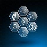 Абстрактные концепция и значок технологии предпосылки в голубом свете, мозге и человеческом теле излечивают Стоковая Фотография RF