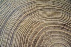 Абстрактные кольца текстуры на деревянной поверхности Стоковое Изображение RF