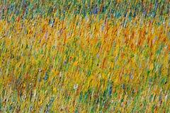 абстрактные краски масла Стоковые Фото