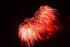 Абстрактные красочные фейерверки с различными цветами на темных предпосылках ночи Стоковое Фото