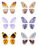 Абстрактные крыла бабочки Стоковые Фото