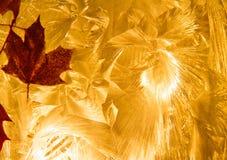 Абстрактные листья падения на текстурированной оранжевой предпосылке Стоковые Изображения