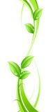абстрактные листья предпосылки Стоковые Изображения RF