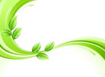 абстрактные листья предпосылки Стоковое Фото