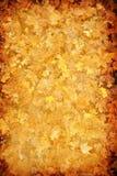 абстрактные листья grunge предпосылки осени Стоковое Изображение