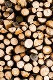 Абстрактные предпосылки: простая куча древесины стоковые фото
