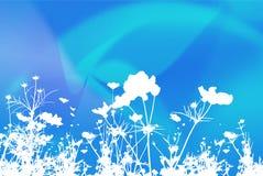 абстрактные предпосылки цветут текстуры Стоковая Фотография