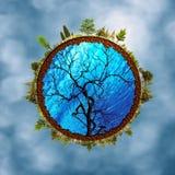 Абстрактные предпосылки eco против запачканных небес Стоковые Изображения