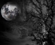 Абстрактные пугающие дерево и луна стоковая фотография