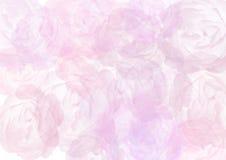 абстрактные розы предпосылки Стоковые Фото
