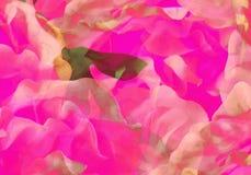 Абстрактные ручной работы цветки стоковые фотографии rf