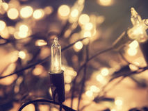 Абстрактные света рождества с defocused bokeh освещают в backgro Стоковые Фото