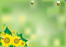 Абстрактные солнцецветы предпосылки Стоковое Изображение
