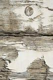 Абстрактные текстуры: Гниющ, слезающ, выдержанная древесина Стоковые Фото
