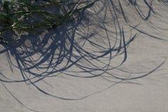 абстрактные тени Стоковая Фотография RF