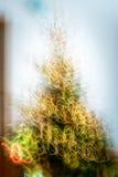 Абстрактные трассировки движений и цветов контраста запачканных светом Стоковые Фотографии RF