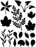 абстрактные формы листьев элементов Иллюстрация штока