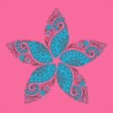 Цветок Mendi Стоковая Фотография