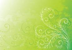 абстрактные цветки предпосылки Стоковое Фото