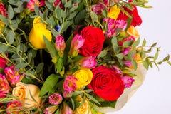 абстрактные цветки предпосылки Конец-вверх Стоковые Фотографии RF