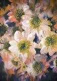 абстрактные цветки предпосылки Стоковое фото RF