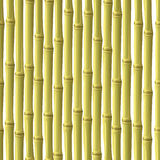абстрактный бамбук предпосылки Стоковая Фотография