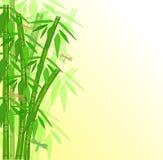 Абстрактный бамбук Стоковая Фотография