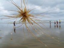 Абстрактный взгляд друзей на пляже стоковые фото