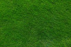 абстрактный взгляд текстуры парка лужайки зеленого цвета травы города предпосылки Стоковое Изображение RF