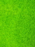 абстрактный взгляд текстуры парка лужайки зеленого цвета травы города предпосылки Стоковая Фотография RF