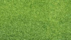 абстрактный взгляд текстуры парка лужайки зеленого цвета травы города предпосылки Стоковое Фото