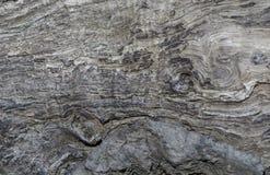 Абстрактный деревянный шаблон Стоковое фото RF
