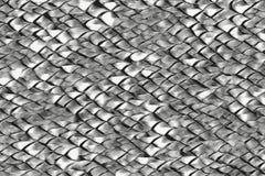 Абстрактный дракон масштабирует предпосылку искусства черно-белую иллюстрация вектора