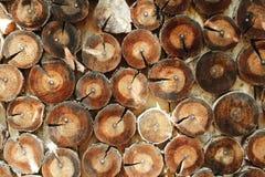 абстрактный журнал конца предпосылки вверх по древесине Стоковое Фото