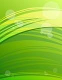 абстрактный зеленый цвет предпосылки самомоднейший Стоковая Фотография