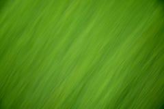 абстрактный зеленый цвет предпосылки Стоковое Изображение