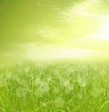 абстрактный зеленый цвет bokeh предпосылки Стоковое Изображение