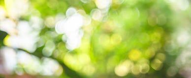 Абстрактный зеленый цвет bokeh Стоковые Фото