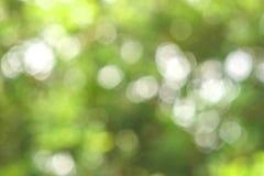 Абстрактный зеленый цвет bokeh Стоковое Изображение RF