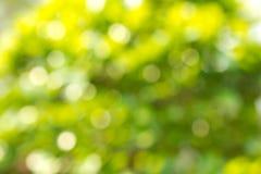 абстрактный зеленый цвет bokeh Стоковые Изображения RF