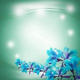 абстрактный зеленый цвет предпосылки влияние нерезкости предпосылки 50mm горит сторону партии nikkor ночи Стоковое Фото