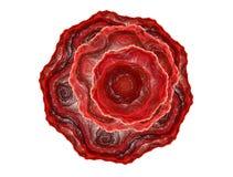 абстрактный красный цвет фрактали поднял Стоковые Изображения RF