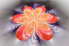 Абстрактный красочный цветок на серой предпосылке Стоковое Изображение RF
