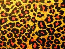 абстрактный леопард Стоковое фото RF